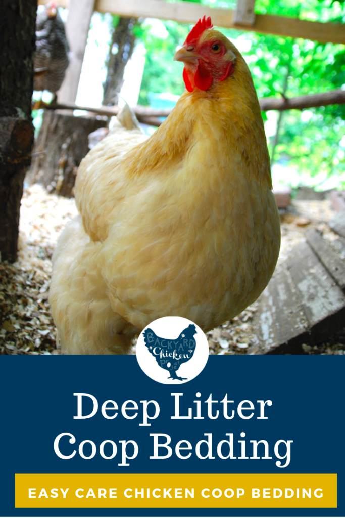 How to Use Deep Litter Method for an Easy Care Coop in ...