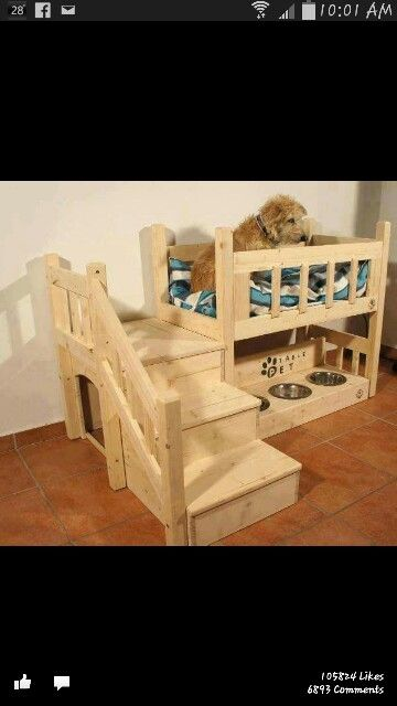 This would be great for my Remi!