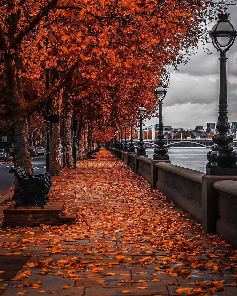 People Places Things Etc Autumn Photography Autumn Scenery Fall Pictures
