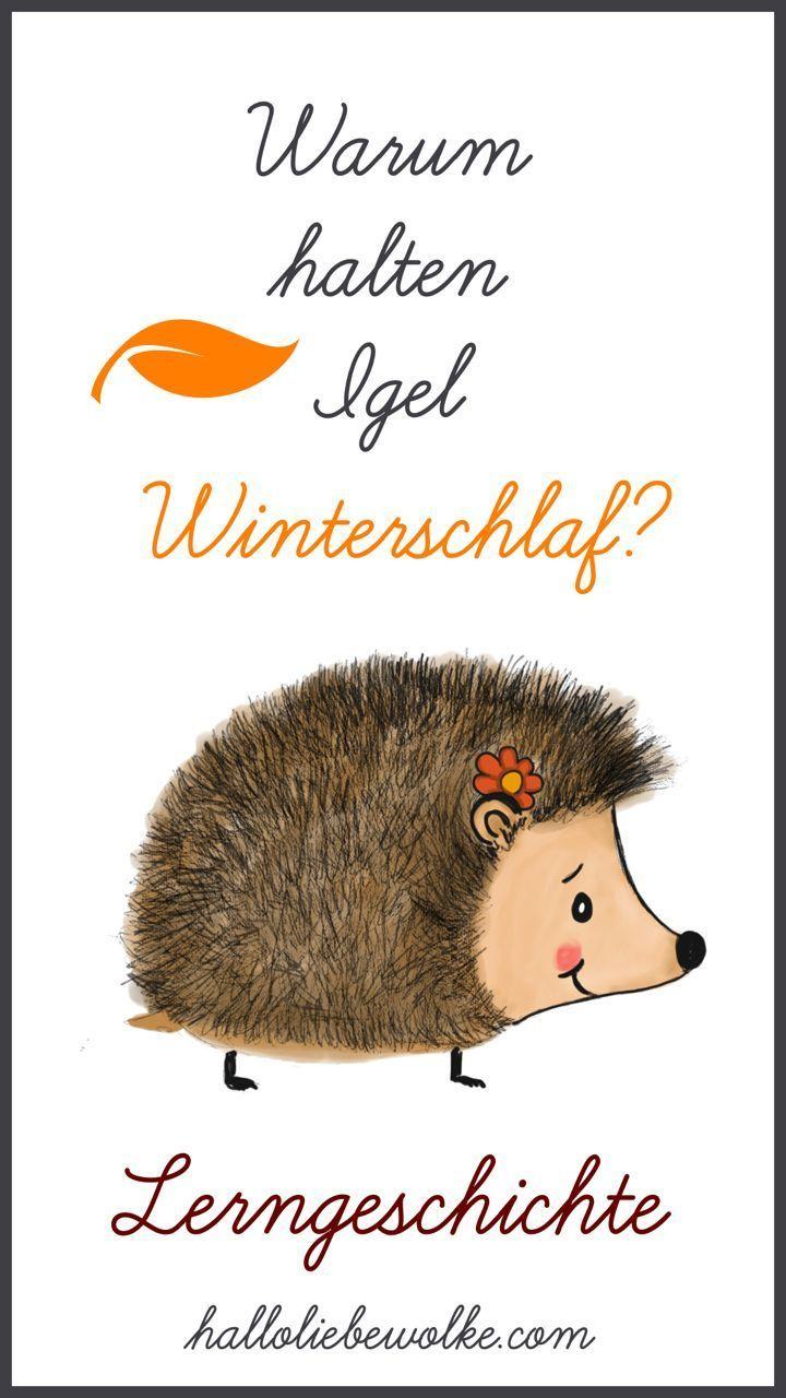Igel Isi und der Winterschlaf (Lerngeschichte & Printable) • Hallo liebe Wolke