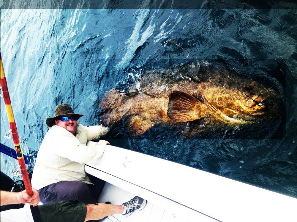 Epic Extreme Fishing Big Man Catches Big Fish Fishing Big Fish Florida Video Big Fish Fish Fishing Pictures
