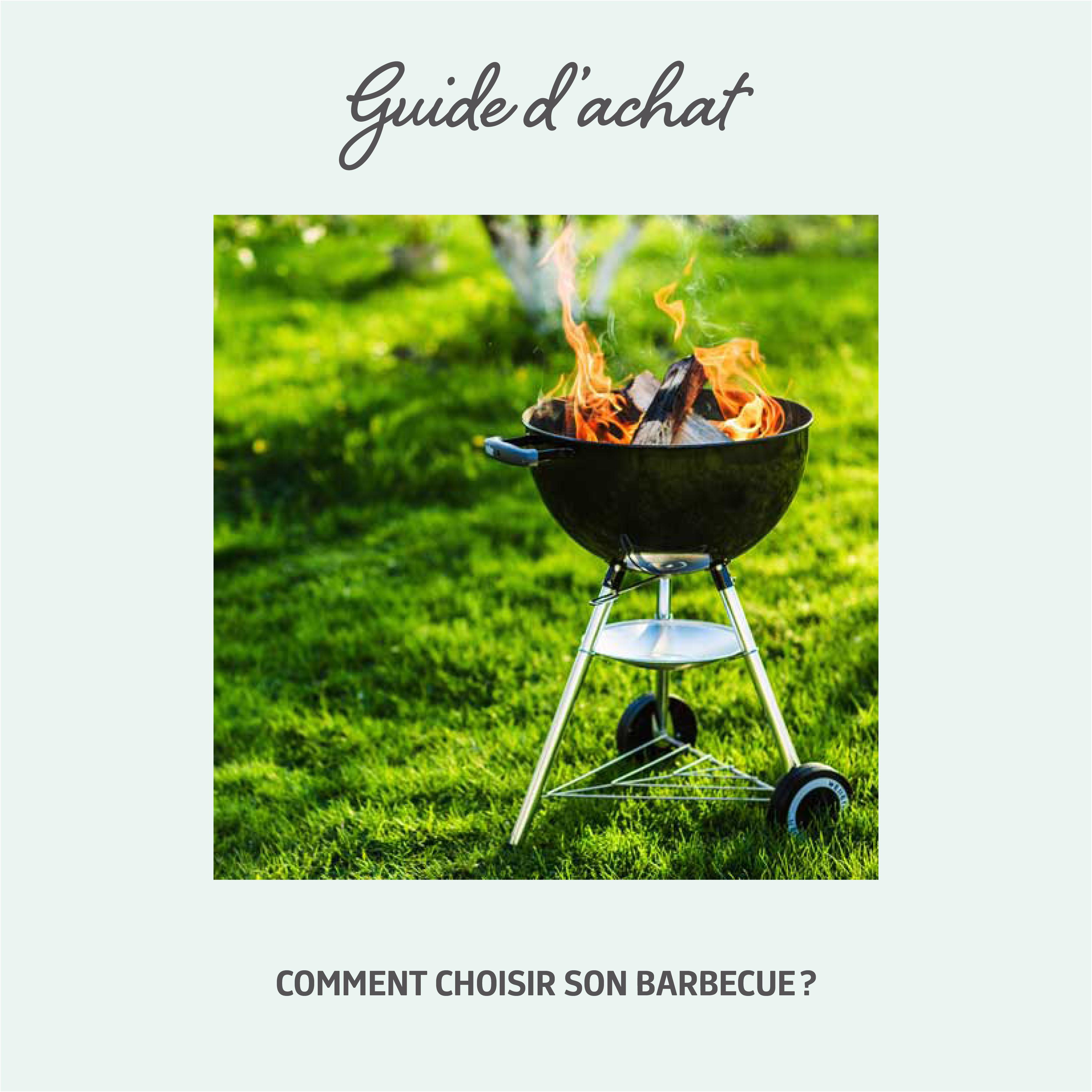 Barbecue Ou Plancha Que Choisir jardin #barbecue #bbq #printemps #grillades | barbecue