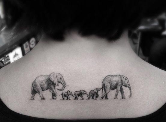 Elephants walking single file by Doctor Woo
