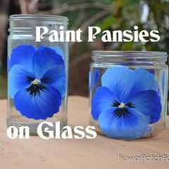 Paint Pansies on Glass