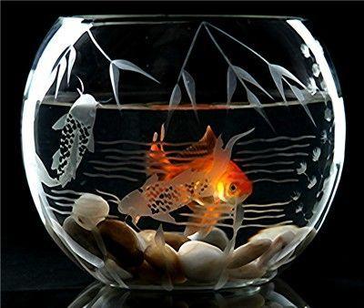 Betta Art Decorative Fish Bowl Pleasing Decorative Etched Glass Fish Bowl  Stuff To Buy  Pinterest Inspiration