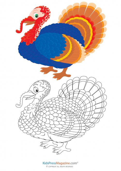 Coloring Match Turkey Turkey