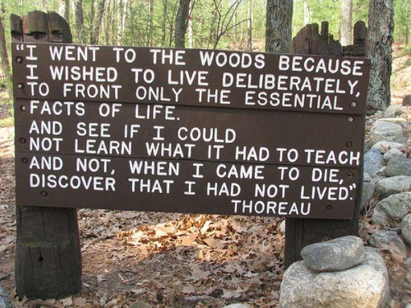 Nature Thoreau Walden Quotes