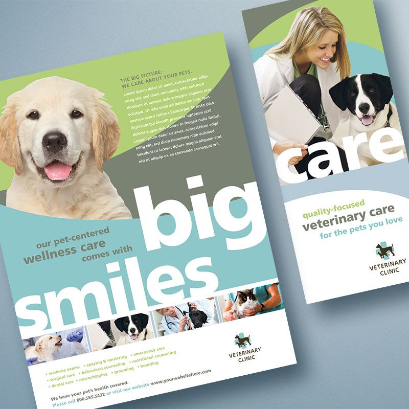 veterinary clinic brochure template design by stocklayouts