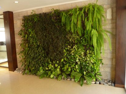 9 ideas para crear un bonito jardín vertical de interior Green