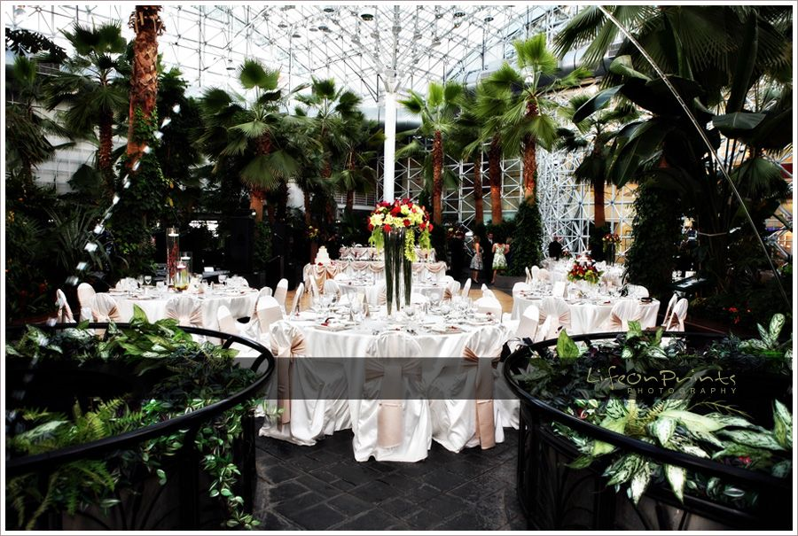 c598c99ee9fd54c2bc406e764212814f - The Crystal Gardens At Navy Pier Wedding