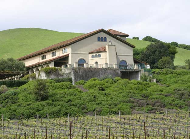 Gloria Ferrer.  Bubbly, tours, wine caves, great patio with views over the vineyards.