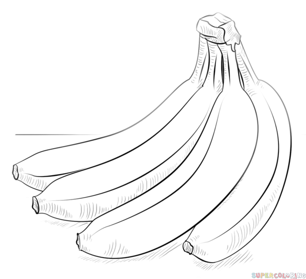 How to draw a bunch of bananas step by step. Drawing tutorials for kids and beginners.