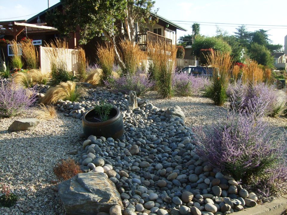 California drought: Rebates for ripping up lawns. Drought Resistant  LandscapingDrought ...