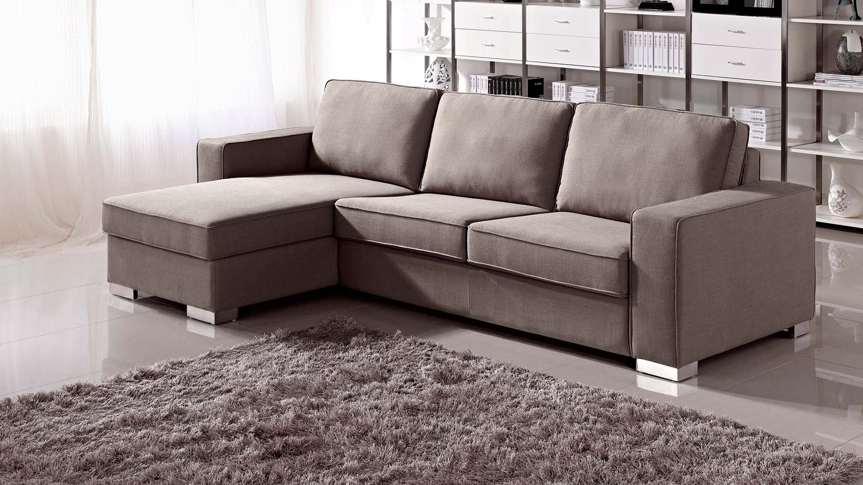 Sectional Sofa With Sleeper And Chaise