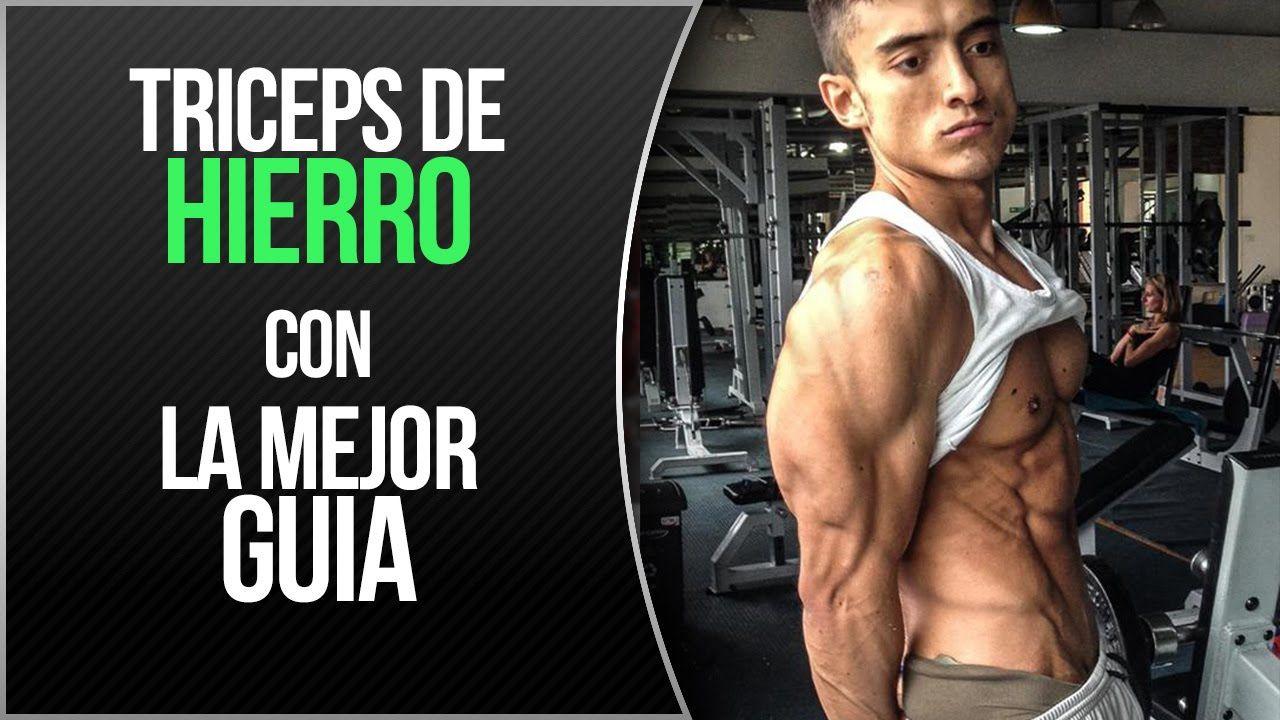 Ejercicios para los tríceps | Una guía para brazos grandes | BICEPS ...