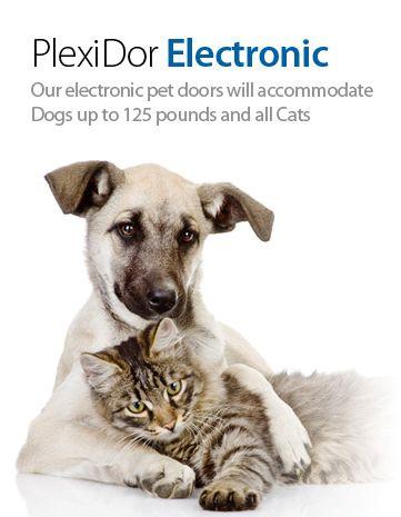 Plexidor Electronic Pet Door Animals Cats Dogs
