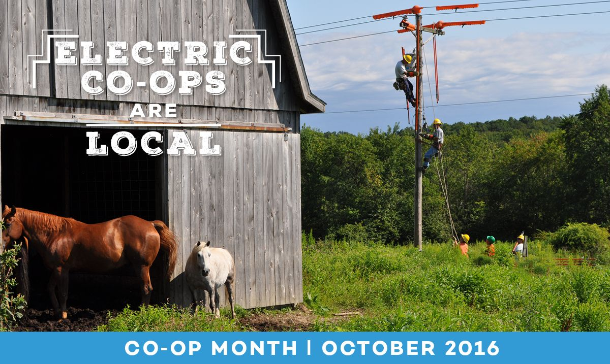 Pin by Owen Electric on The Coop & You Coop, Power