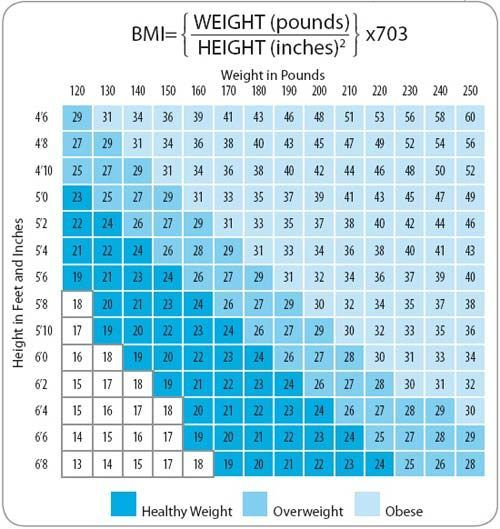The Bmi Boost  Chart Bodies And Exercises