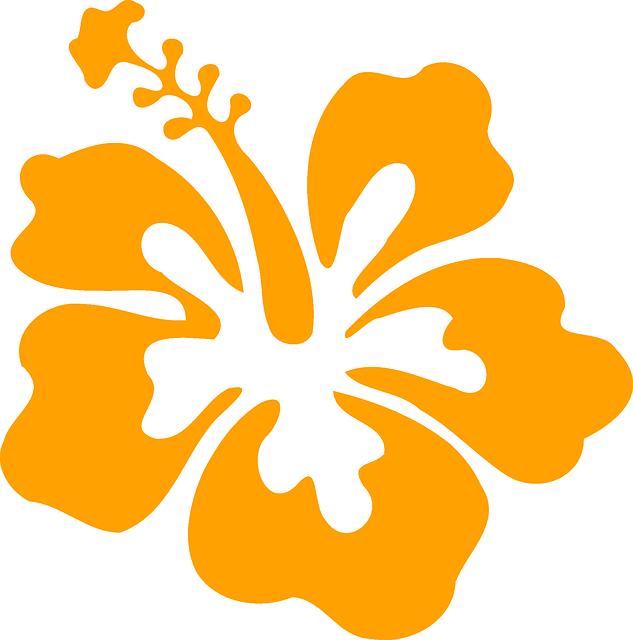 Free Image On Pixabay Hibiscus Flower Orange Hibiscus Free Images Flowers