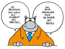 le chat bande dessinee belge