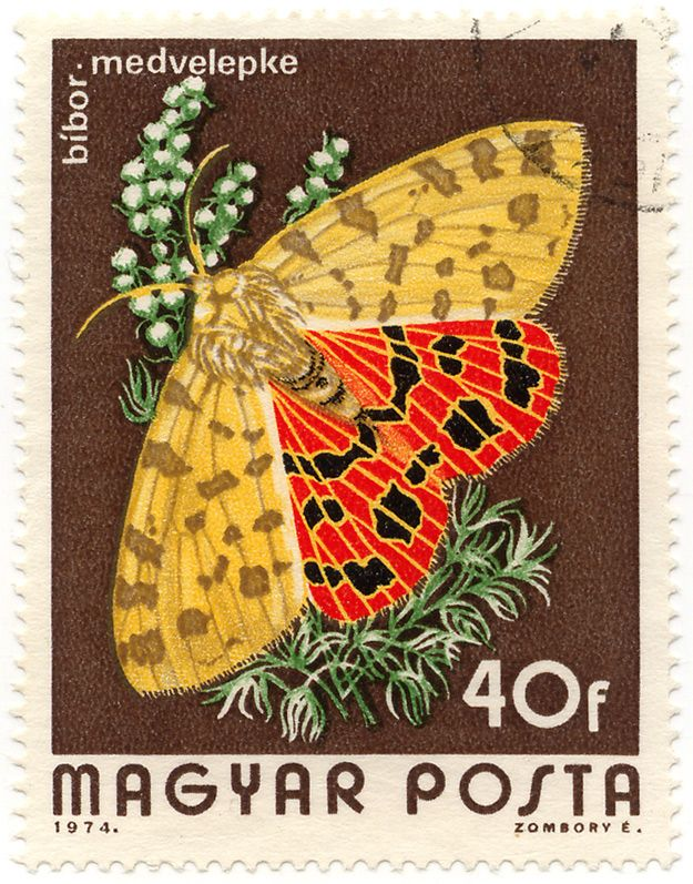 Butterfly Stamp Value 2013