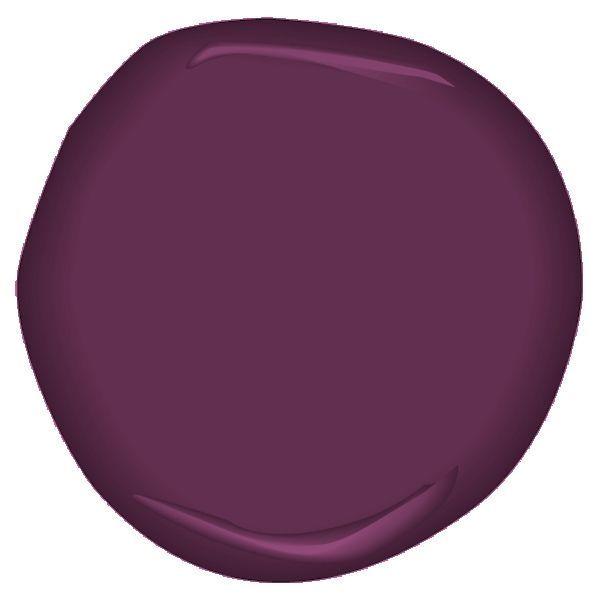 Elderberry Wine CSP-470 In 2019