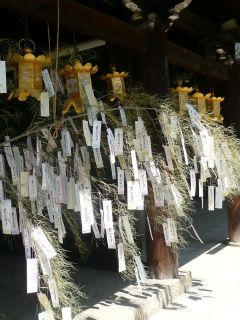 Tanabata Festival of Kitano-Tenman-gu Shrine of Kyoto