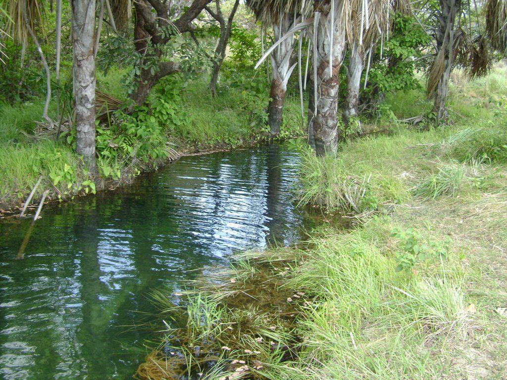 Río de San Pedrito . aguas claras y limpias- Mapire, Anzoátegui.