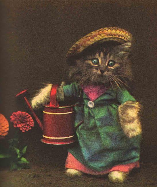 Vintage Kids' Books My Kid Loves: The Little Kittens' Nursery Rhymes