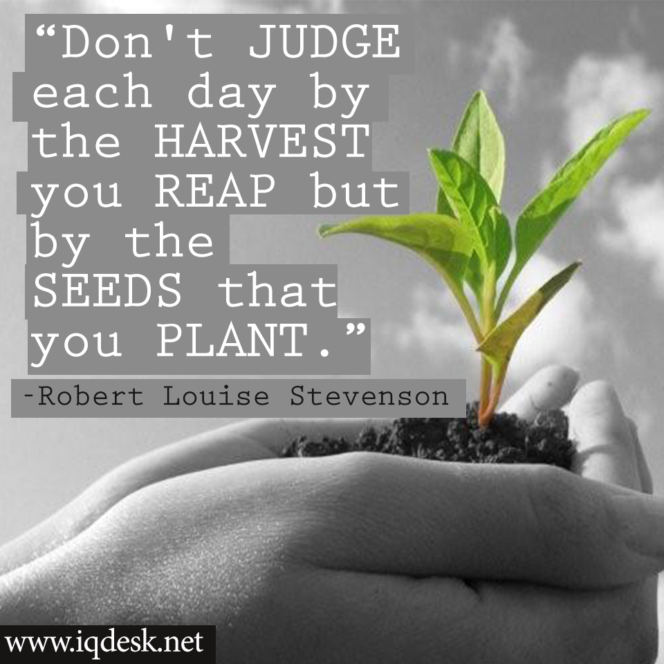 Quotes About Planting Seeds For Life Don't Judge Each Daythe Harvest You Reap Butthe Seeds That