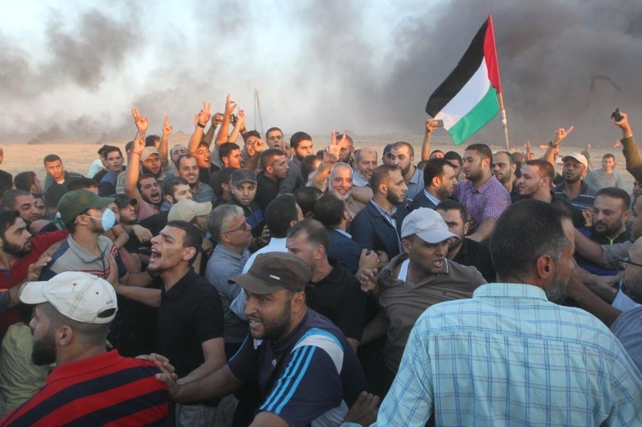 هكذا شارك هنية وقيادات حماس بمسيرة العودة في غزة اليوم Concert Hard Hat Hats