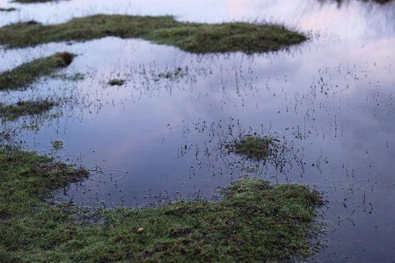 Water drop on pond, photography, goutte d'eau sur un étang à la nuit tombée, Photographie by Les bonnes Résolutions