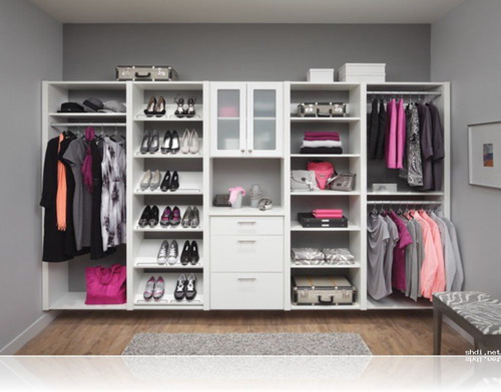 Incredible Design Walk In Closet Ideas Features Rectangle Shape