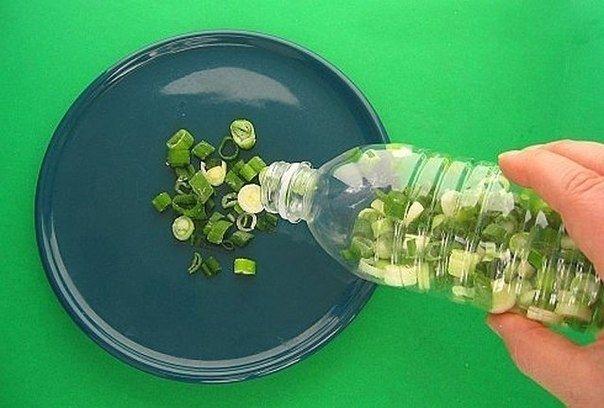 Храните резанный зеленый лук в морозилке в пластиковых бутылках.  Только убедитесь, что лук абсолютно сухой, прежде чем засыпать его в бутылку