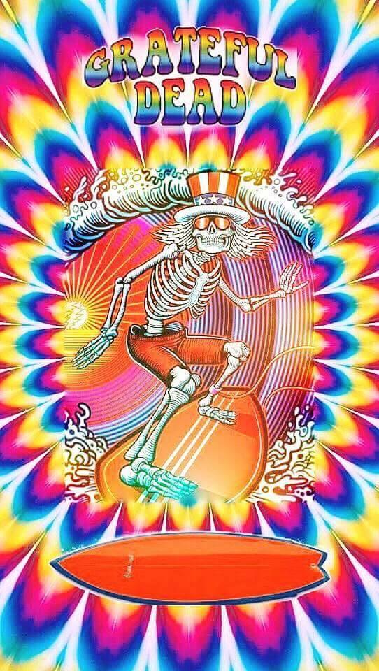 Pin By Zev Russ On Dead Airplane Etc Grateful Dead Wallpaper Hippy Art Dead Pictures