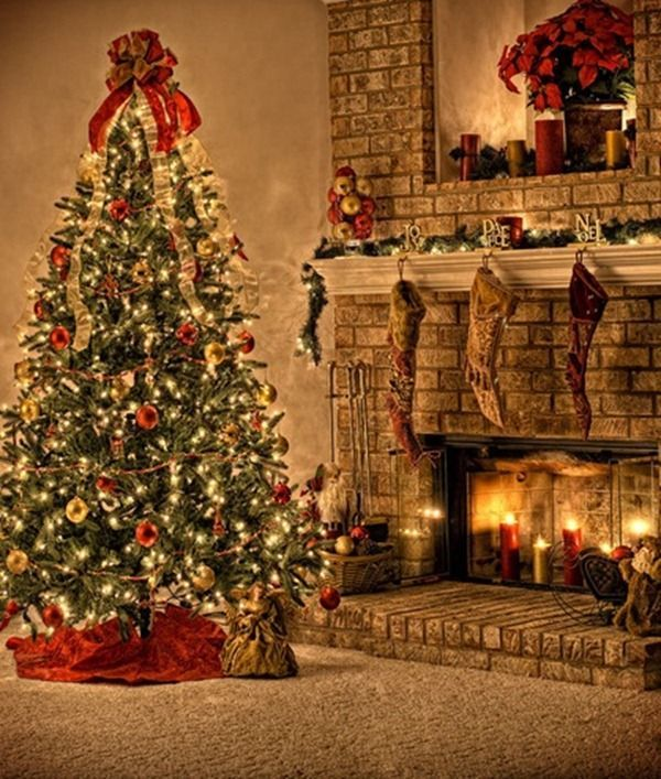 Today in this post I am going to showcase 25 really beautiful Christmas Tree  pictures.