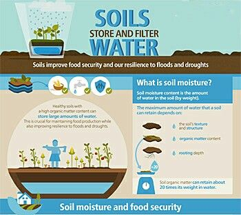 Sustainable water use, starts with sustainable (agricultural) soil use first!