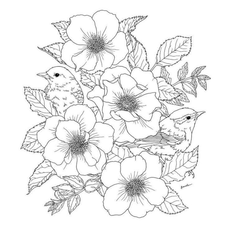 Картинки по запросу раскраска цветы для взрослых | Рисунок ...