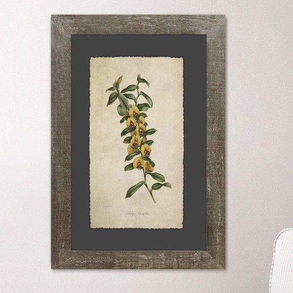 Verdure Framed Print Collection | art ideas | Pinterest | Farmhouse ...