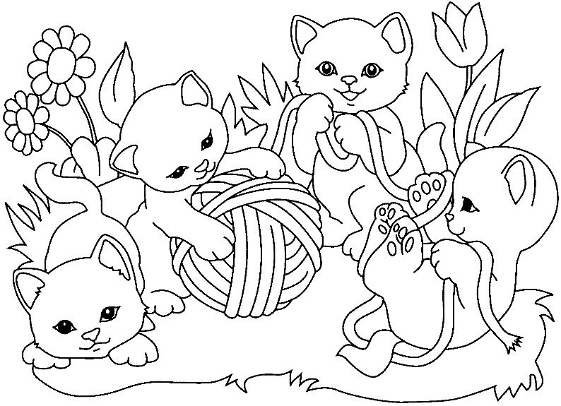 13 Realiste Coloriage Bebe Chat Photograph Coloriage Chaton Coloriage Chat Coloriage