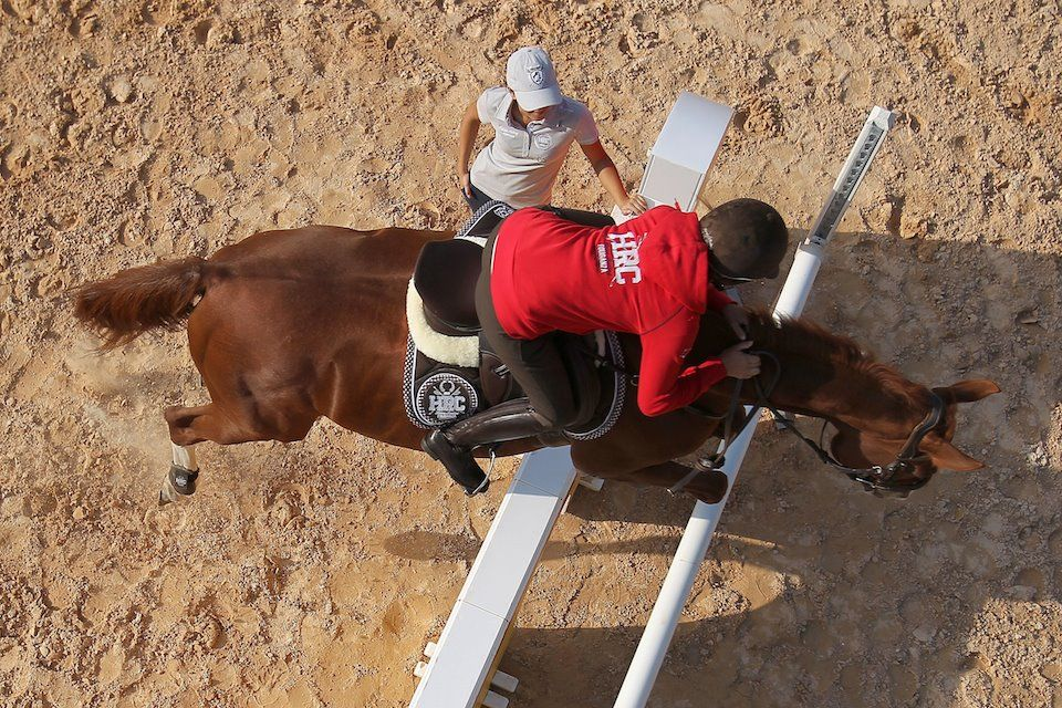 Fouganza La Passion De L Equitation Campus Site