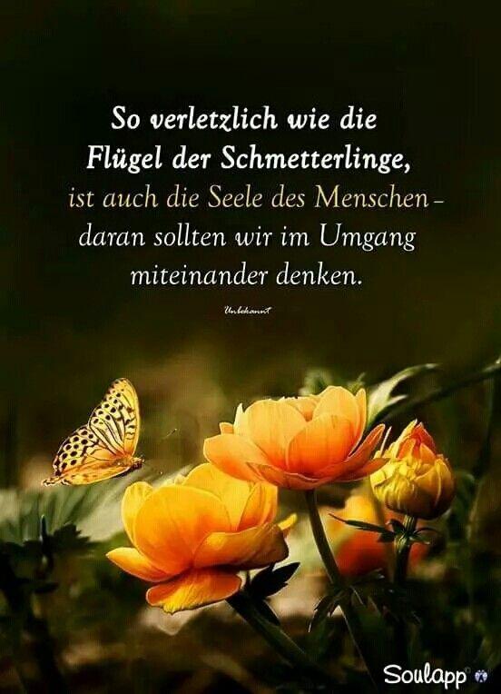 Pin Von Lydia Grethen Auf Zauberhaft Hexe Nachdenkliche Spruche Tiefsinnige Spruche Lebensweisheiten Spruche