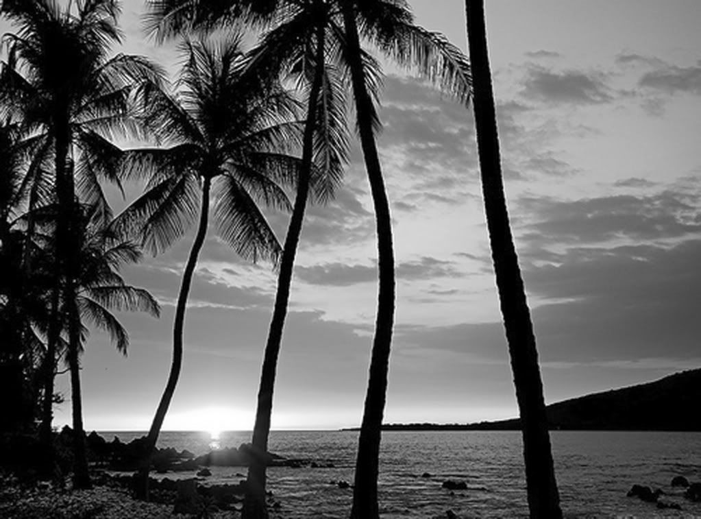 Black and white beach sunset