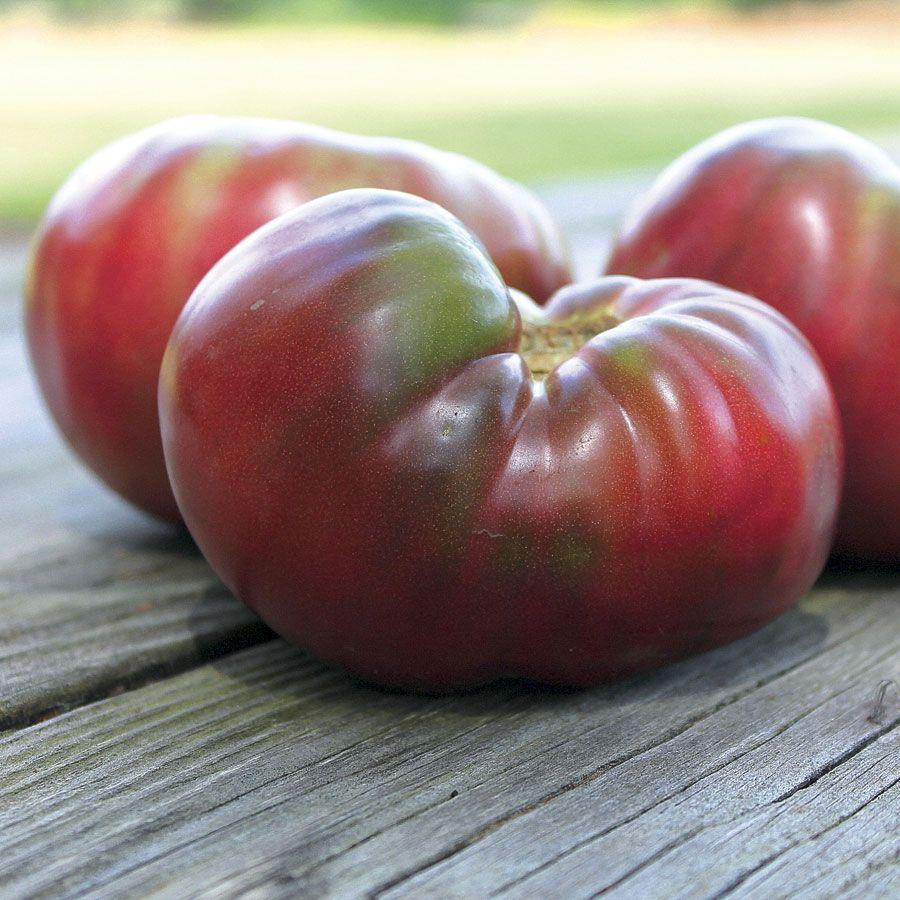 Cherokee Purple Organic Tomato Seeds Cherokee Purple 400 x 300