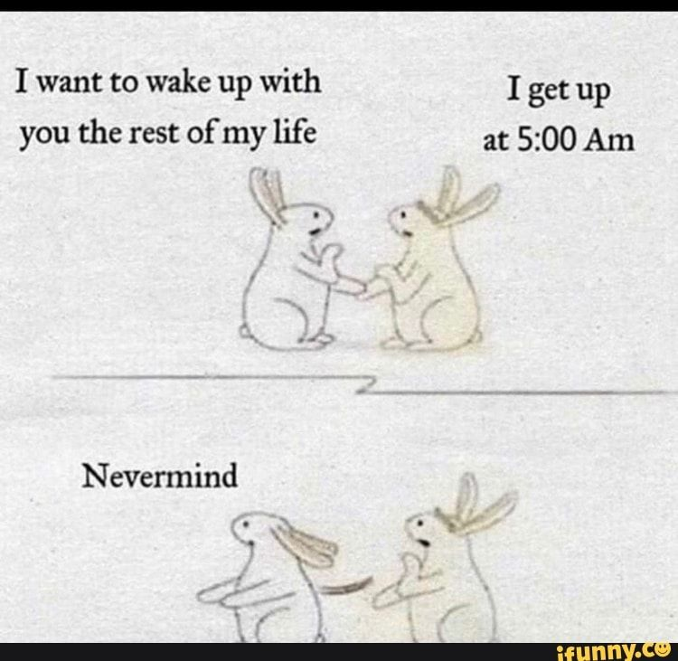 I Want To Wake Up With I Get Up Nevermind Ifunny Funny Memes Wake Up With You Funny Pictures