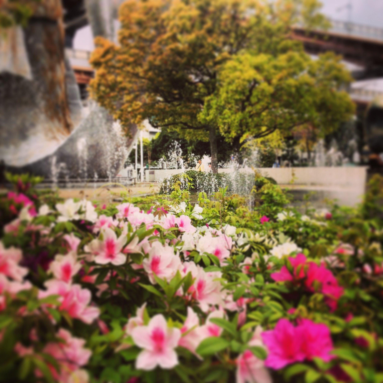 in Kobe JAPAN