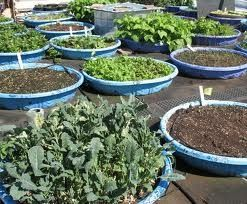 recycle kid pool into a garden bed Google Search