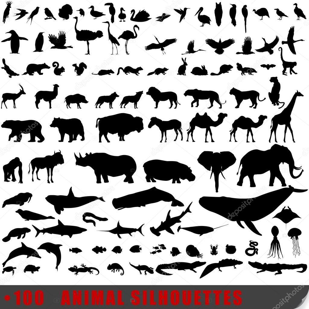Satz von 100 sehr detaillierte tierischen Silhouetten ...
