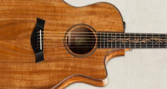Using A Guitar Humidifier And Other Guitar Humidity Tips Taylor Guitars Taylor Guitars Guitar Taylor Guitars Acoustic