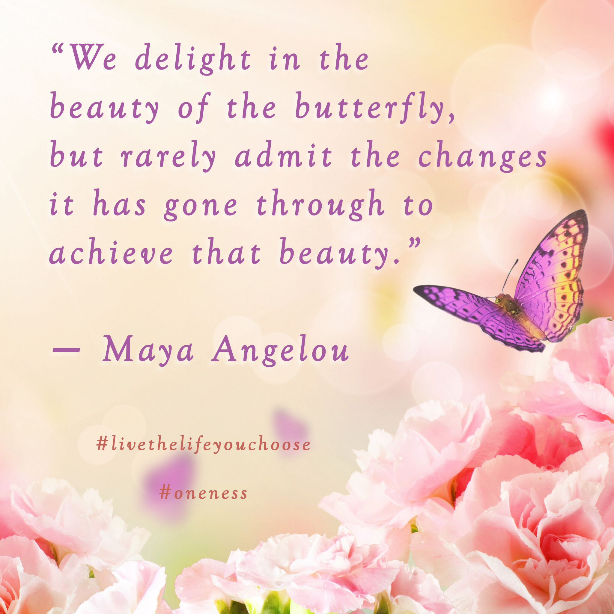 We delight in the beauty of the butterfly but rarely admit the thoughts kristyandbryce Images